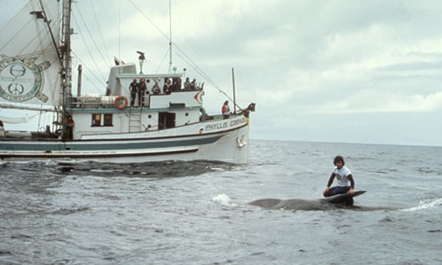 first anti-whaling campaign